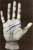 lineas de las manos